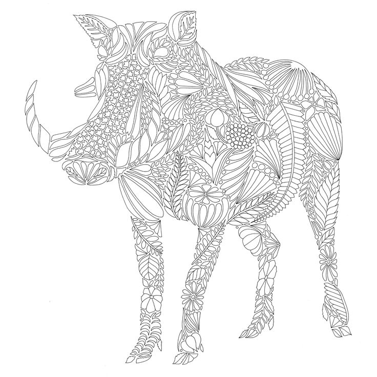 59 best Wild Animals Adult Colouring! images on Pinterest Adult - best of complex elephant coloring pages