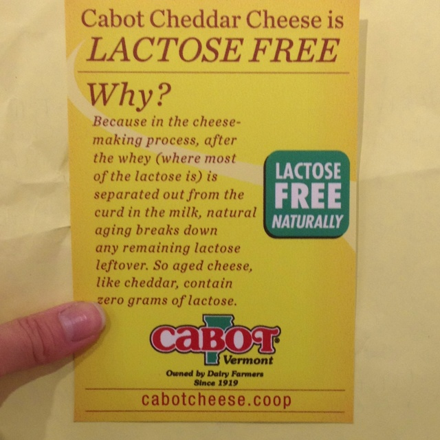Aged cheese is lactose free?! What?! Sweet!