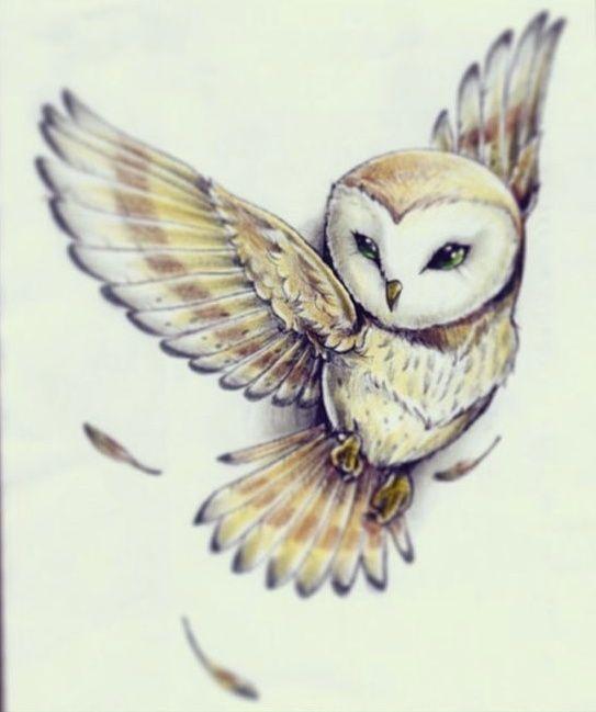 Die besten 17 Ideen zu Eulen Tattoo auf Pinterest | Eulen ... Labyrinth Owl Tattoo