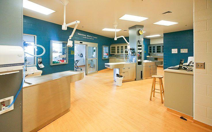 Kansas Humane Society - Veterinary Medical Center - Wichita, KS - (316) 524-9196
