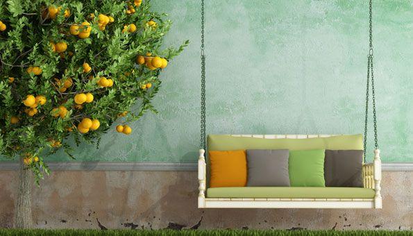 Mediterraner Garten: Planen, anlegen und die richtigen Pflanzen