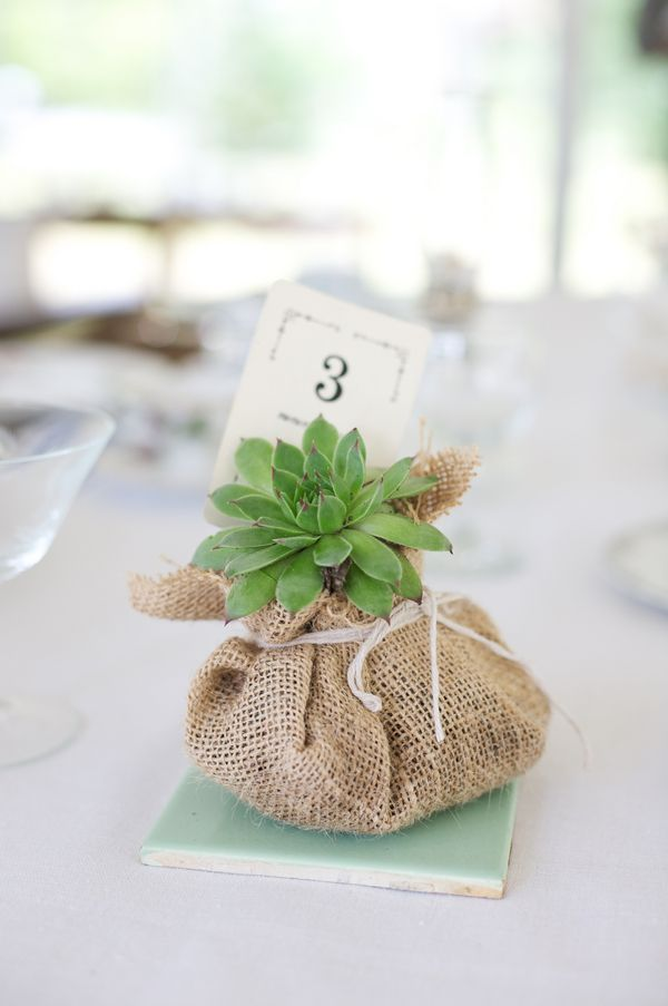 plants in burlap for table numbers // photo by ChuppPhotography.com