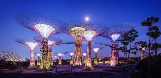 Garden by the Bay. Visit the place at night, and you will find the most breathtaking scenery as well as discover the-never-seen-before plant species #SGTravelBuddy