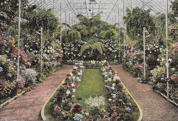 Jewel Box Forest Park Greenhouse St Louis vintage postcard