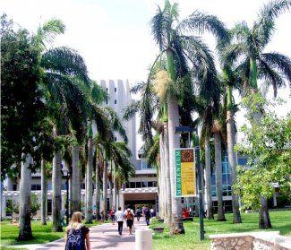 university+of+miami | ... وجامعة ميامي Top Universities in Miami University of Miami