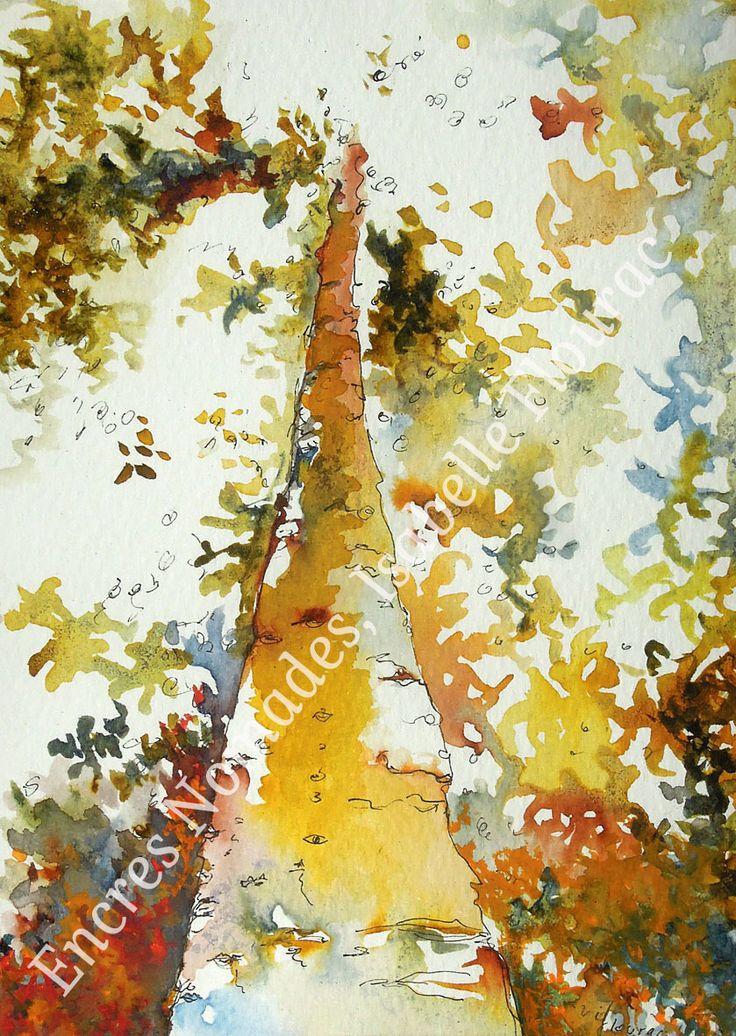 Carte Postale Jungle Orchestra, arbre du Taman Negara : Affiches, illustrations, posters par encresnomades