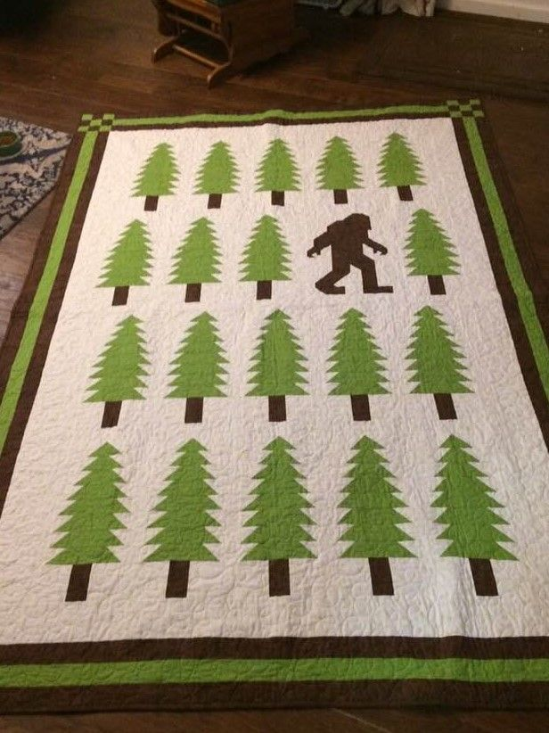 I loved making this quilt for my great nephew Gavin!!!  (Legendary by Elizabeth Hartman).  I added an extra row and borders to make it twin size!!!