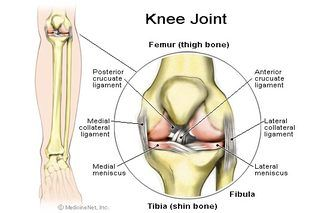 Arthroscopic knee surgery takes approximately 45 minutes, depending on the extensiveness of the surgery. Normally, a patient is under general anesthetic during surgery. A small incision is made on the knee and allows surgical instruments to be placed into the knee. A fiber optic camera is inserted into the knee to provide a clear view of the...