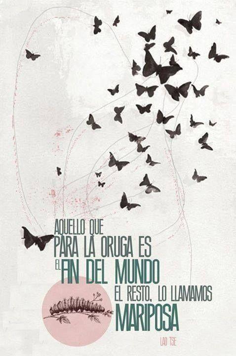 Aquello que para la oruga es el fin del mundo, el resto lo llamamos mariposa. (Lao Tse)