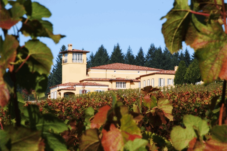 Domaine Serene (near Portland)  Spectacular views and wine!!