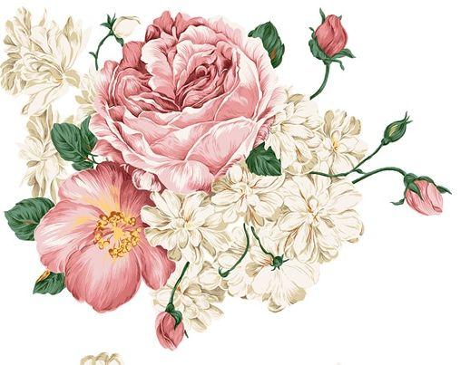 Peony Flower Psd File Download Free Psd Download