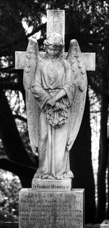 Aldershot Military Cemetery - thoughtful angel