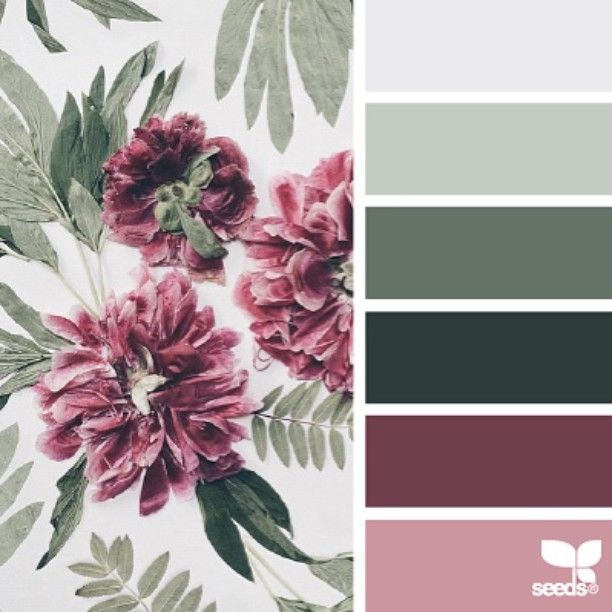 today's inspiration image for { flora hues } is by @daynaembreydesign ... thank you Dayna for another inspiring #SeedsColor image share!