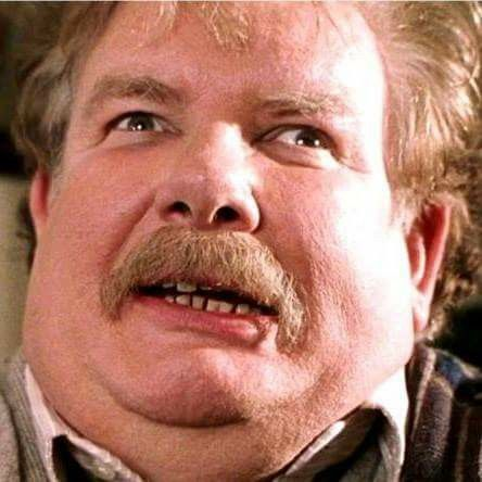 Image result for uncle vernon dursley