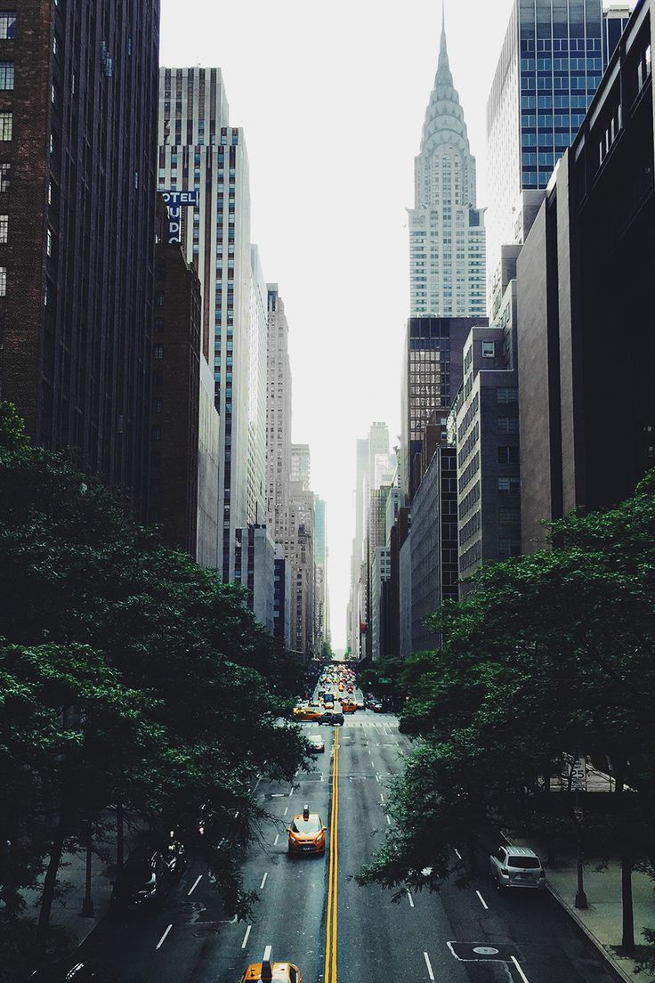 envyavenue: Concrete Jungle.