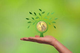 Distintas alternativas de financiamiento para emprendedores.