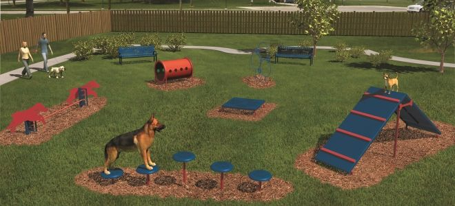 1000 Images About Barkpark Doggie Playground On