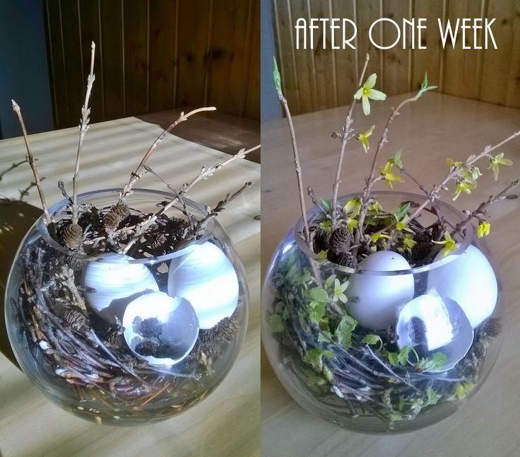 Pääsiäisen kukka-asetelma / Easter flower arrangement