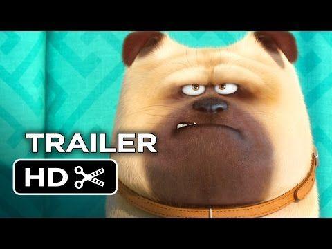▶ The Secret Life of Pets Official Teaser Trailer #1 (2016) - Jenny Slate, Kevin Hart Movie HD - YouTube