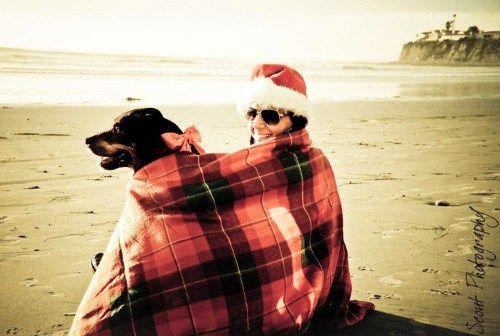 Christmas on the Beach with Dog Photo Shoot
