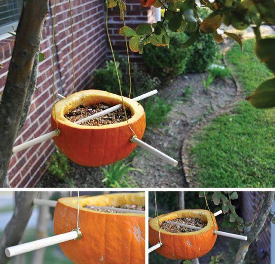 Weekend Project: Pumpkin Bird Feeder Honest To Nod