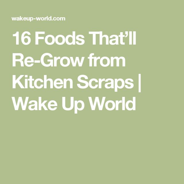 16 Foods That'll Re-Grow from Kitchen Scraps | Wake Up World