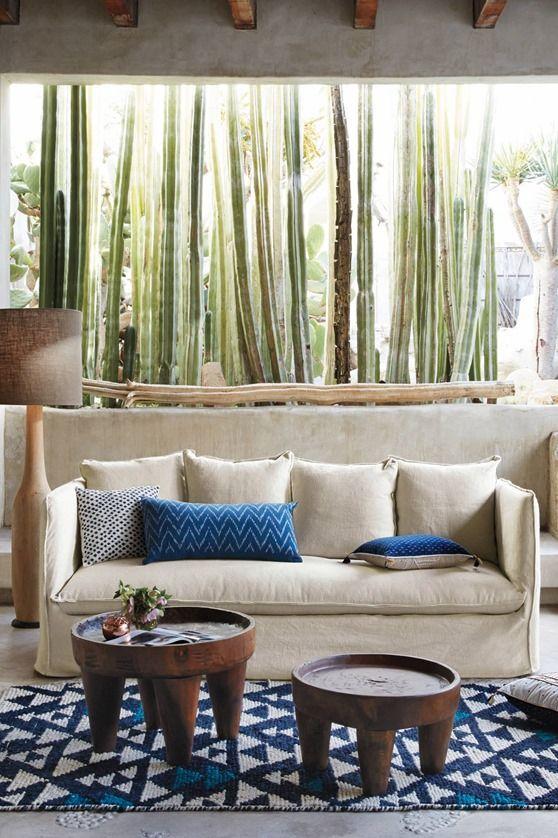 desert life...love the colors...love the massive window....