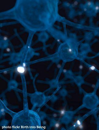 """""""La tecnología no facilita el progreso del cerebro"""" Tres especialistas dan su visión sobre los aspectos perjudiciales del uso de la tecnología en el aula"""