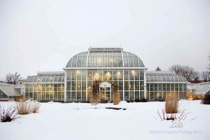 Amparo Espana Photography: End of winter II. helsinki Botanic Garden