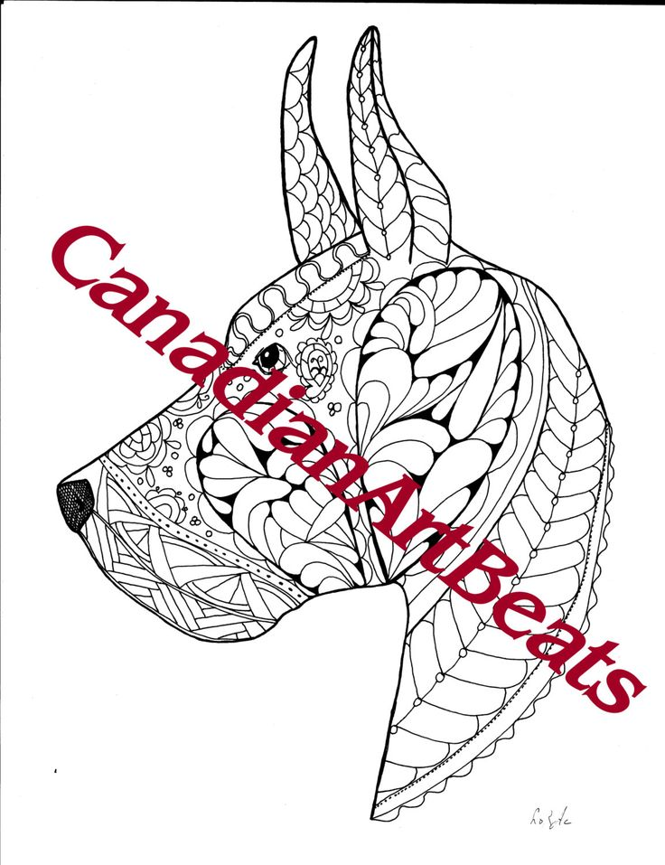 adult coloring page great dane dog downloadable printable gift wall art by canadianartbeats on etsy
