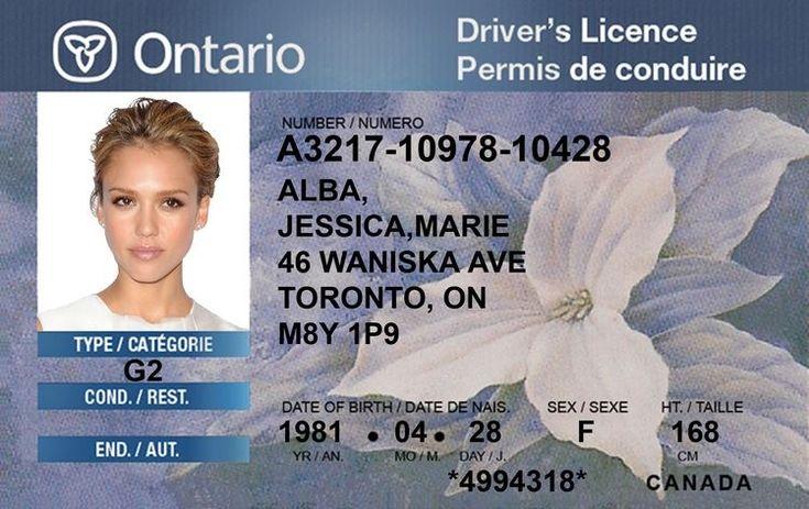 Buy ontario drivers license online in 2020 drivers