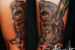 Tattoo owl is a good suggestion for your new tattoo. A Perfect suggestion for your sleeve tattoo.