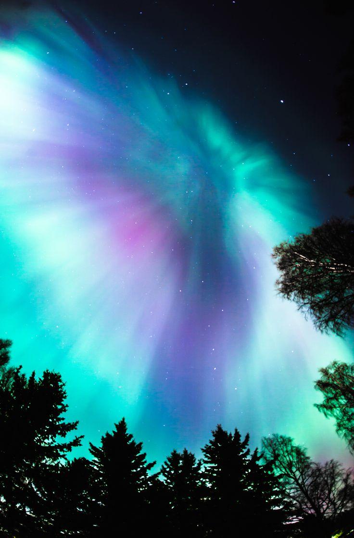 Northern lights my backyard ... amazing shot!
