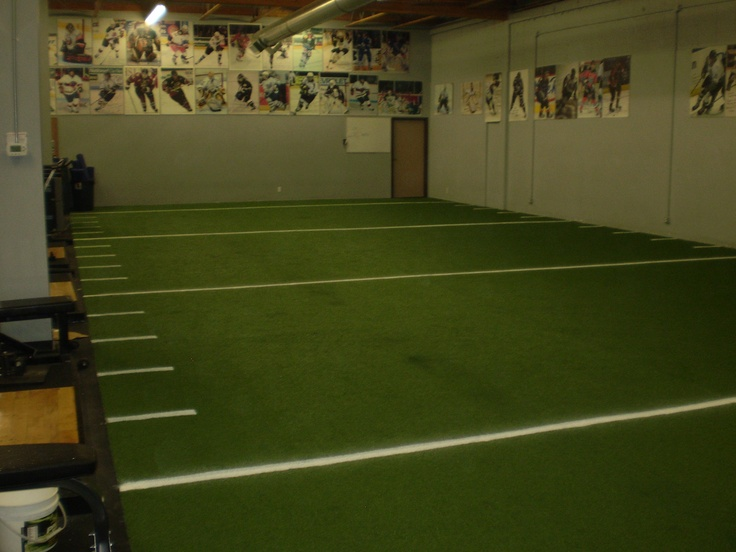 Basement Turf Field | Ideas For 3778 Gehman | Pinterest | Basements, Man  Caves And Indoor Images