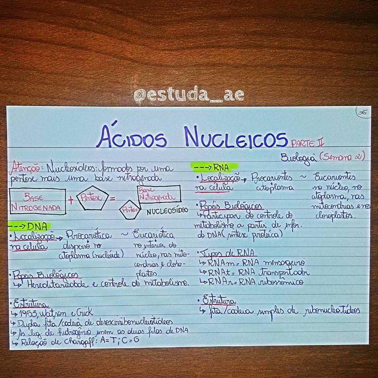 Biologia - Acidos Nucleicos • • • #medporamor #vaitermedsim #projetomedicina #medicina #foconojaleco #medico #docto #saude #brasil #usp #concurso #medicinabrasil #foconamedicina #amomed #fuvest #estudar #enem #aprovacao #voupassar #medicine #vestibulando #estudaratepassar #resumos #estudaquepassa #vemmed #med #TagsForLikes #TagsForLikesApp#TagsForLikesApp