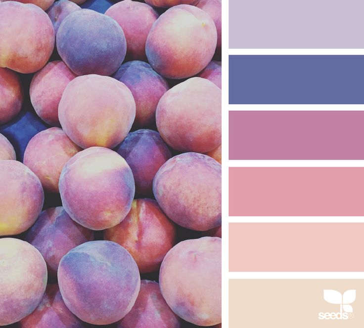 fresh hues. Mellow warm tones with a hint of purple