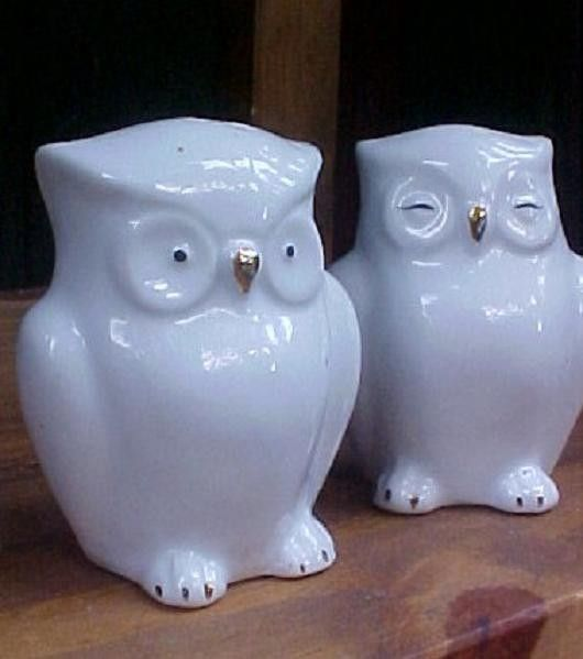 Porcelain owl salt and pepper shakers a little birdie told me