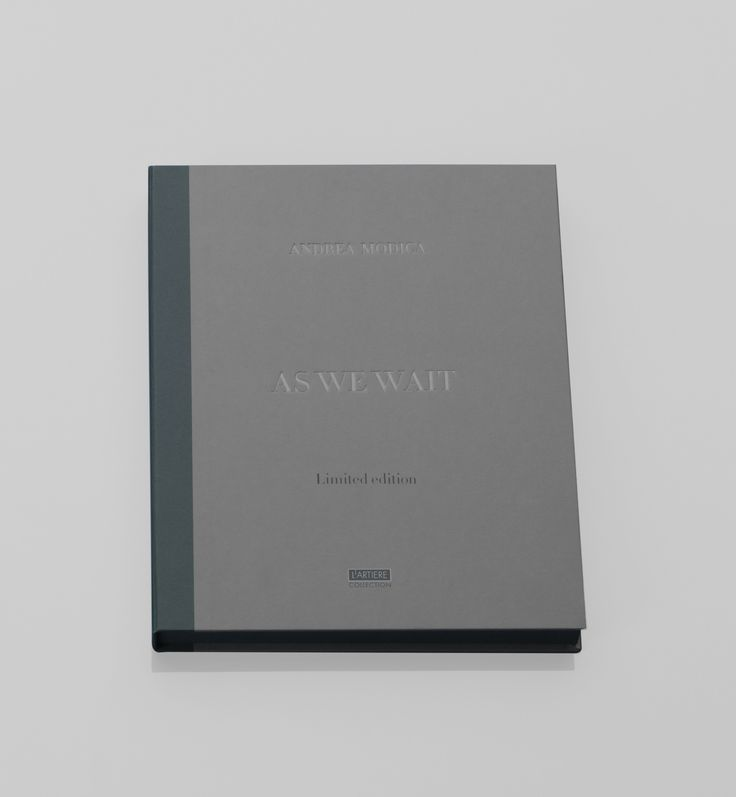 As We Wait Photography by Andrea Modica; L'Artiere Publishing.  Text: Larry Fink. 2015 Size of the book: 24.5 x 30.5 cm Size of the Box Set: 26 cm x 32,5 cm 72 pages – three-colour printing Hardcover package Published in English Limited Edition of 25 copies presented in a clothbound box