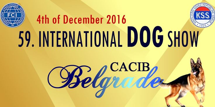 The Cover Page of the Web Portal Jelena Dog Shows-59. INTERNATIONAL DOG SHOW – C.A.C.I.B. BELGRADE-04.12.2016.