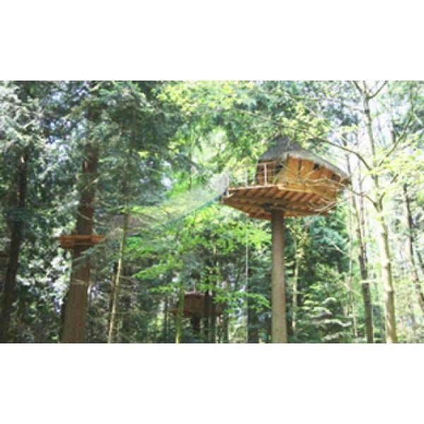 Coffret Cadeau Cabanes dans les arbres : la nuit dans une belle cabane perchée - Séjour Insolite 100 % Nature