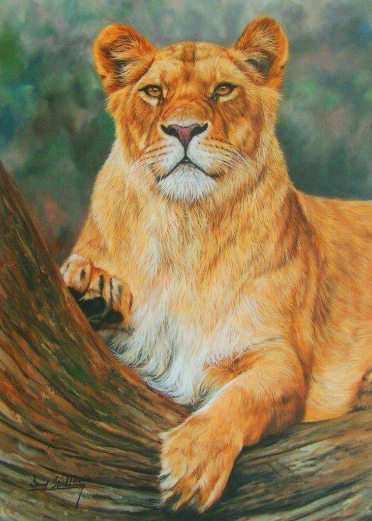 lioness painting | PAISAJES CON ANIMALES EN PINTURAS COMERCIALES