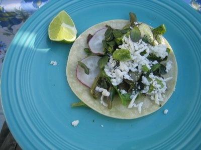 Our Barrio Ranchito: Tacos de Nopales y Verdolagas