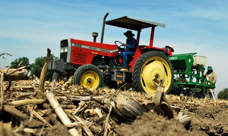Is selling corn residue worth harming soil?