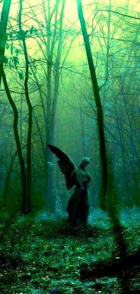 Absinthe's Garden:  Stone Angel in #Absinthe's #Garden.