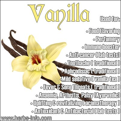 Vanilla, which comes from an orchid, is a highly useful medicinal plant. The integration of pure vanilla into foodstuffs has powerful beneficial health effects, as it not only helps to boost the immune system, but it also helps to fight off minor ailments. - See more at: http://www.herbs-info.com/vanilla.html#sthash.RAAALTCS.dpuf