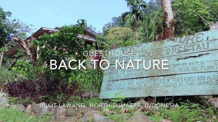 Guesthouse Back to nature