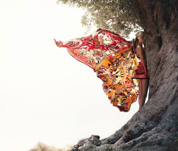Bette FrankeforHermesSpring/Summer 2012: Crushes Cul, Fashion Beautiful, Hermes Butterflies, Beautiful Isabel, Hermes Ss, Spring Summ 2012, Photography Art, Beautiful Fashion, Hermes Spring Summ