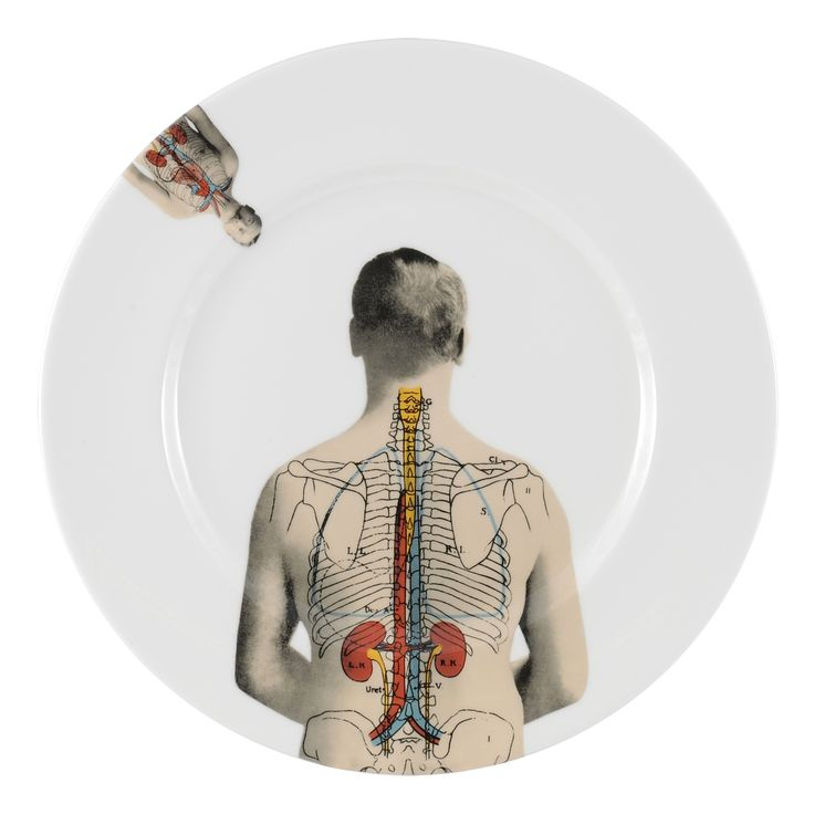 "8"" 'Anatomica' Breakfast Plate featuring elements of Lisa's cool design. This range celebrates the beauty of the 'human machine' discovered in the 19th century and shows an appreciation for the beauty of who we are. Inspired by wonderful illustrations found in anatomical books during that time, this collection features formal etchings designed by talented artist Lisa Turner. Dishwasher safe, Fine Bone China. Find out more here…"