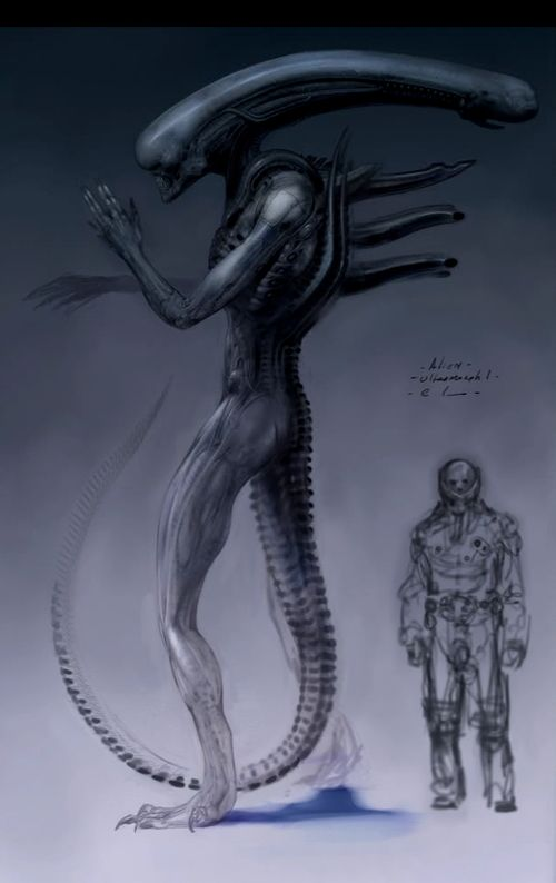 alien-covenant-is-rumored-to-feature-two-xenomorph-type-monsters