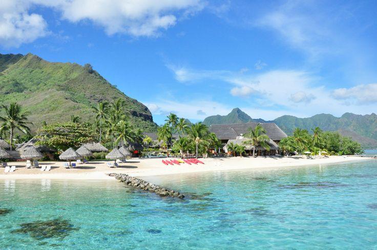 Le rêve polynésien | Lune de miel insolite en Polynésie #HiltonMoorea #Polynesie #Polynesia #Luxe #Moorea #Island #Robinsoncrusoe #honeymoon #Lagoon #Blue #Snorkeling #Love